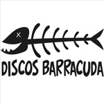 Disco Barracuda