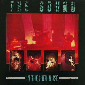 The Sound, In The Hothouse